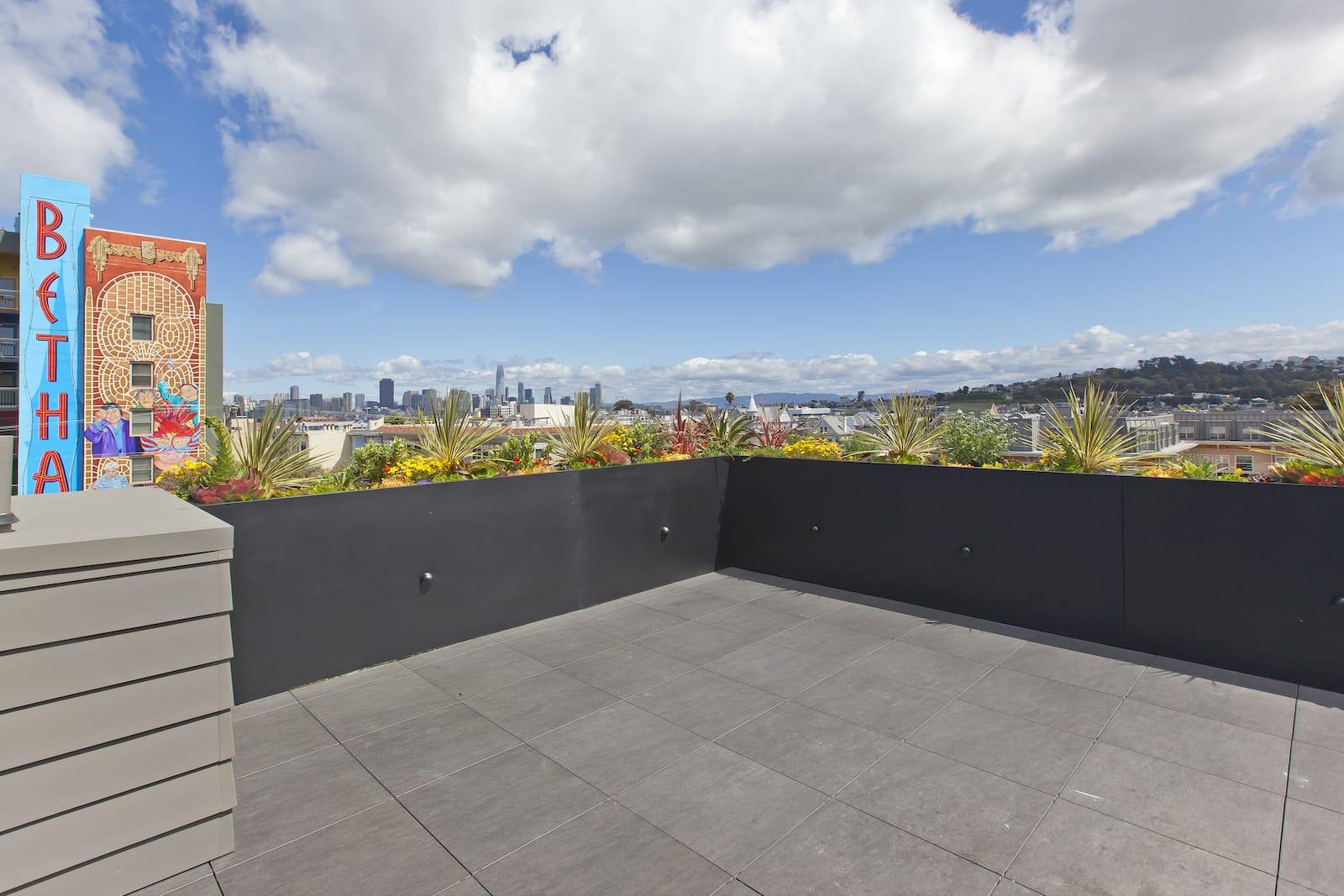 606Capp Roof4